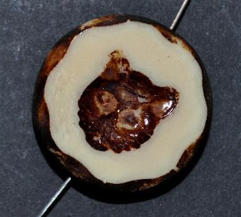 Best.Nr.:671284 Glasperlen / Table Cut Beads beigebraun opak, mit eingeprägtem Katzenköpfchen, geschliffen mit picasso finish
