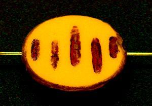 Best.Nr.:67867 Glasperlen / Table Cut Beads geschliffen mit Travertin-Veredelung, nach alten Vorlagen aus den 1930/40 Jahren neu gefertigt